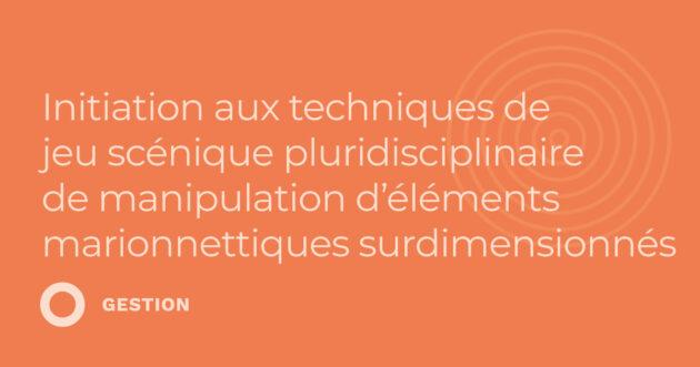 Initiation aux techniques de jeu scénique pluridisciplinaire de manipulation d'éléments marionnettiques surdimensionnés (3.38)